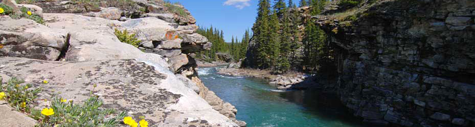 Sheep River PP - Banner Image