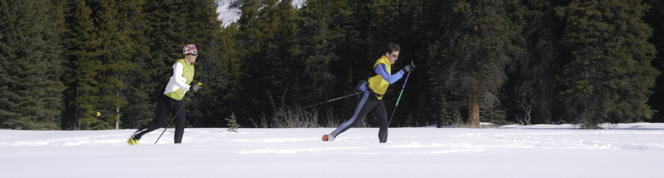 Come cross-country skiing in Alberta's parks